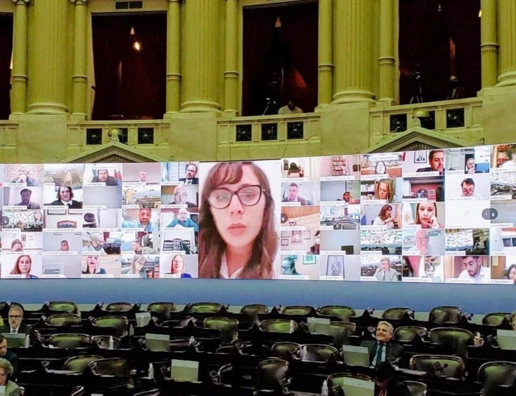 Sesión virtual Diputados Josefina Mendoza