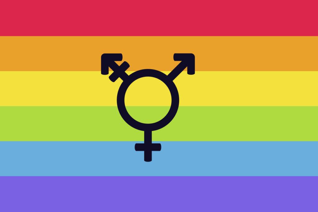 Tercer opción de sexo/género en el DNI